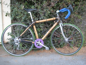 my bamboo bike